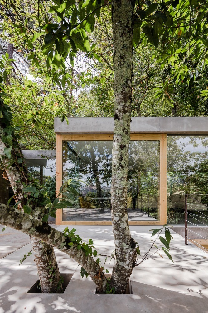 Modern Architect - Cloaked House